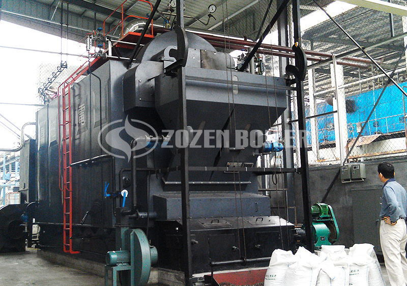 4 tph DZL biomass-fired steam boiler for pharmaceutical industry