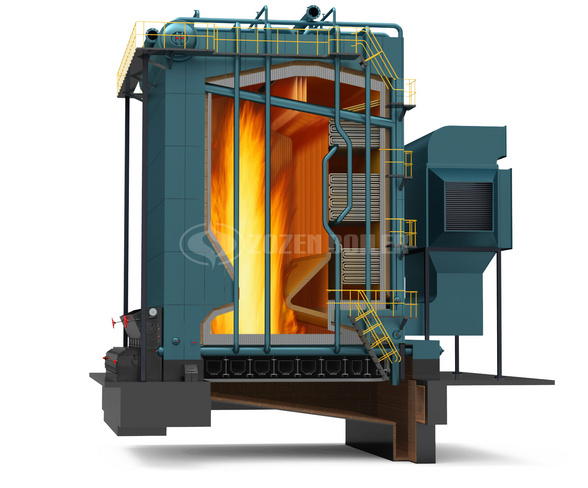 DHL Series Biomass Boiler