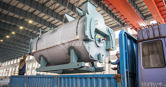 What is the difference between a biomass steam boiler and a biomass hot water boiler