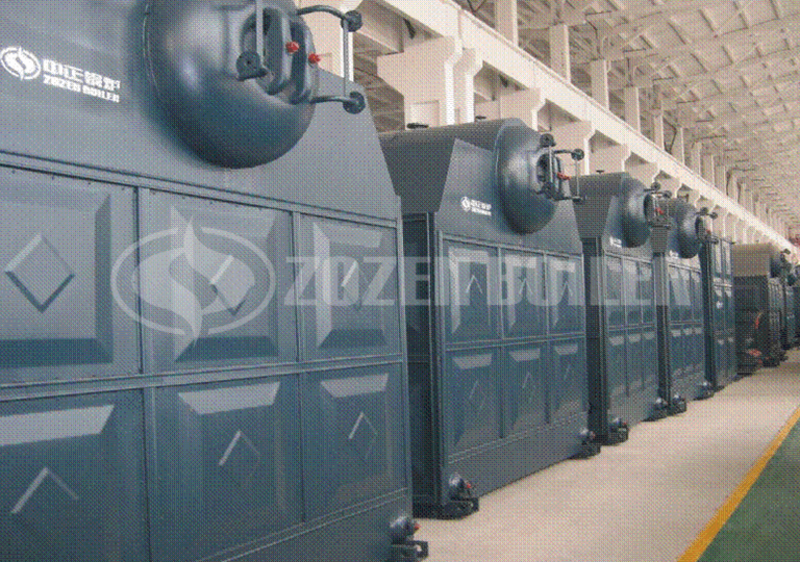 10 tph DZL biomass-fired boiler for heating